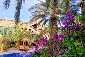 Vegetación Kasbah Hotel Xaluca