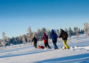 Caminando con raquetas de nieve