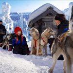 Granja de perros - Navidad en Salla - dia 4