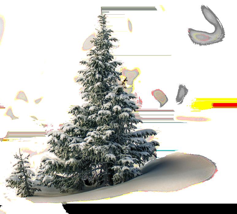 Navidad 2021 Laponia